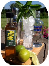 Nettle Syrup Mojito image